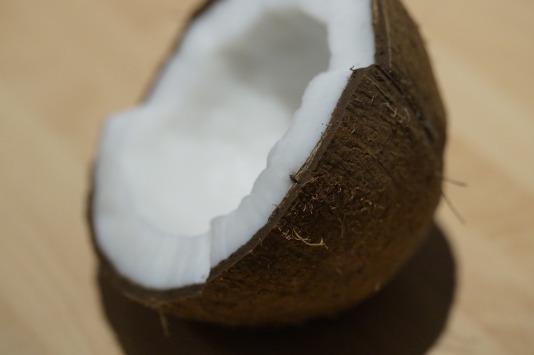 coconut-696541_1920